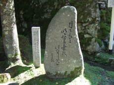 2007_08040074
