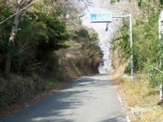 2008_01130049_3