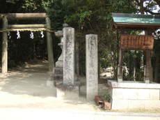2008_03110041
