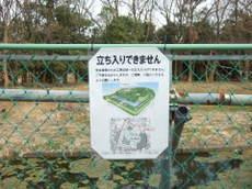 2008_03110057