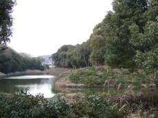 2008_03110076