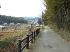 2008_03110191