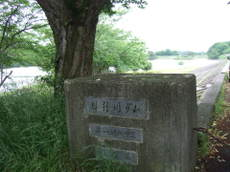 2008_05250095