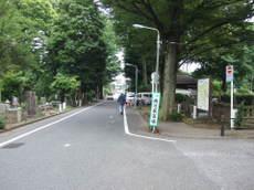 2008_06180086