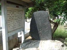 2008_06180091
