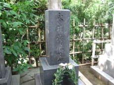 2008_06180096