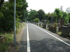 2008_06180097