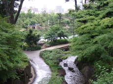 2008_05310272