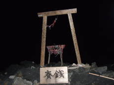 2008_08180279