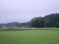 2008_09030023