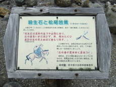 2008_09030059