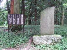 2008_09030216