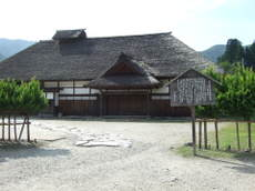 2008_09030251
