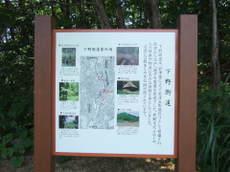2008_09030252