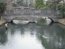 2009_01290150