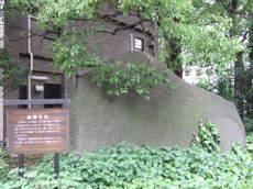 2009_05130202