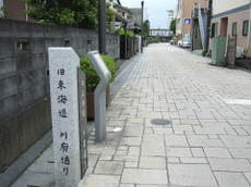 2009_05180101