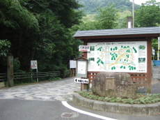2009_06130024