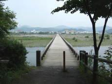 2009_06130114