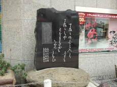 2009_06130118