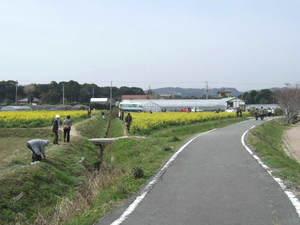 2010_03160078