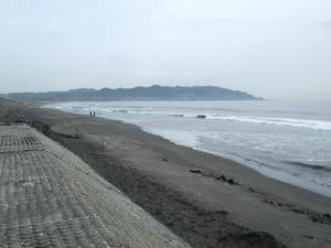 2010_03160139