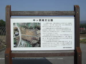 2010_05060021