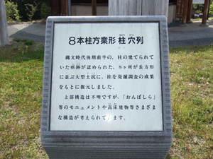 2010_05060022