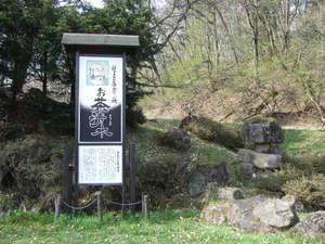 2010_05060032