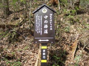 2010_05060035