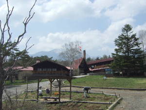 2010_05060398
