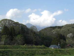 2010_05060468