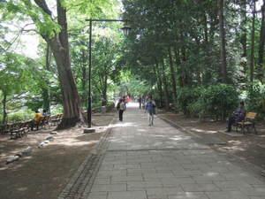 2011_05020031