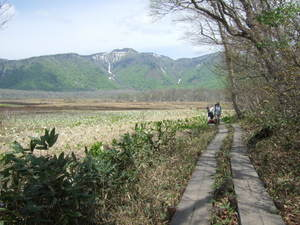 2011_06040208