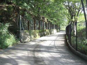 2011_09080014