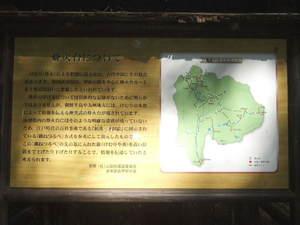 2011_09080032