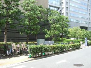2012_05300079