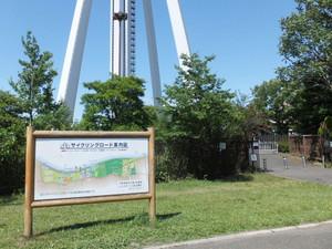 2012_06100295