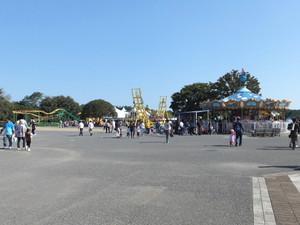 2012_10210133
