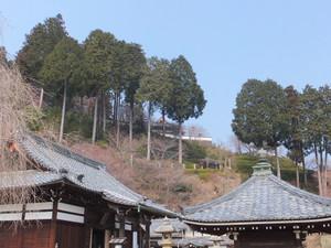 2014_02260463