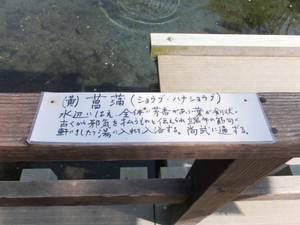2015_05110078