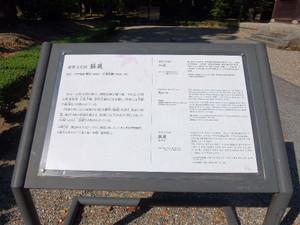 2015_10060405