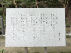 2015_10060451_2