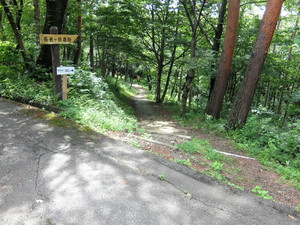 2016_07060146