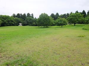 2016_07060164
